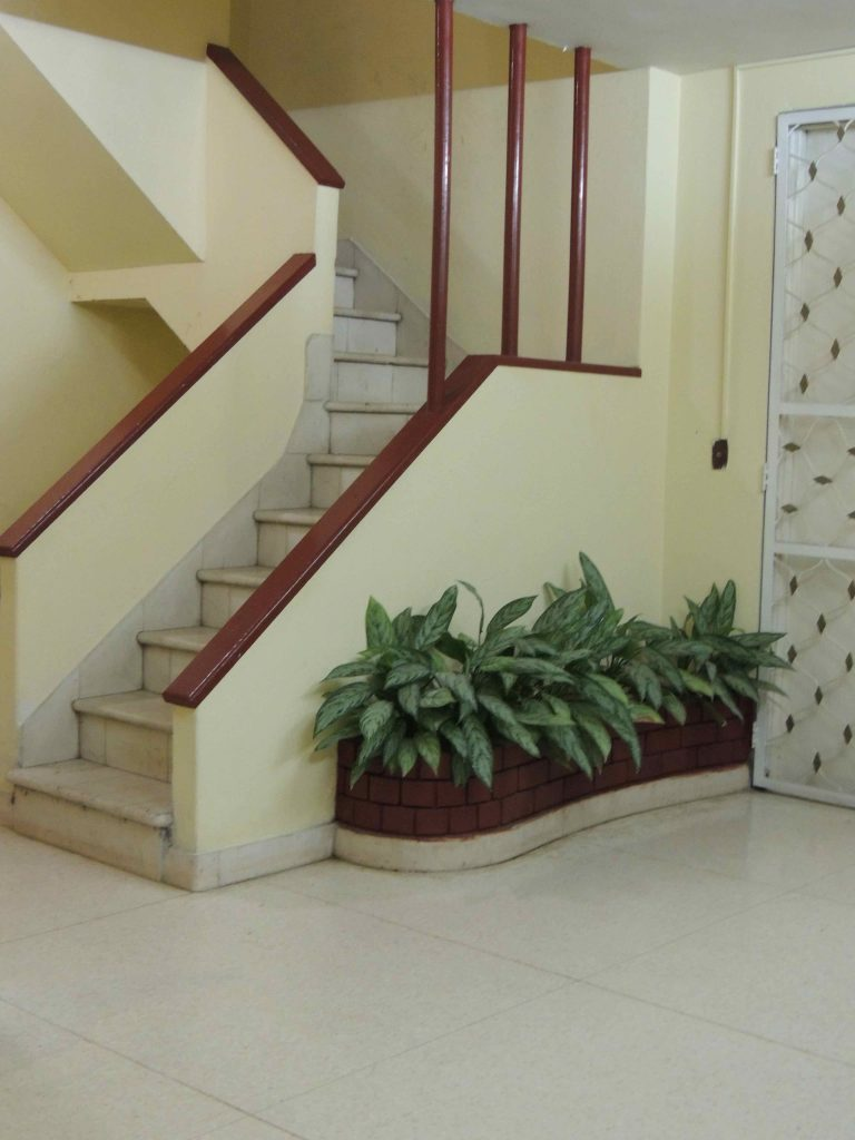 cafe laurent escada