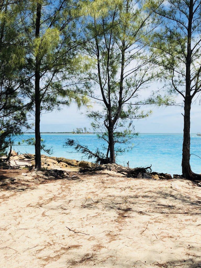 Bimini, um paraíso pertinho de Miami.
