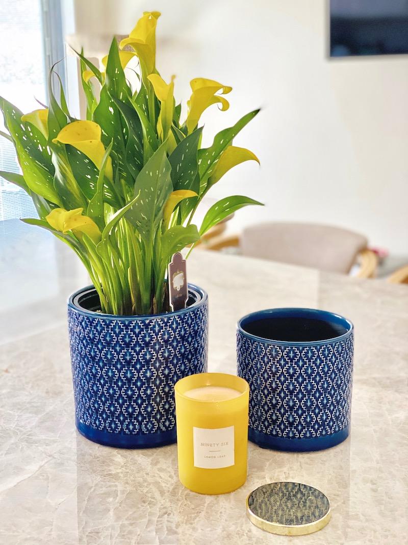 blue vase cover